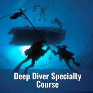 Deep Diver @ Diver's World