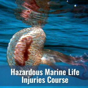 Hazardous Marine Life Injuries @ Diver's World