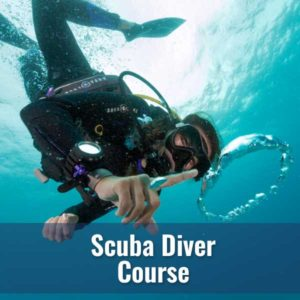 Scuba Diver - Sundays @ DIver's World | Erie | Pennsylvania | United States