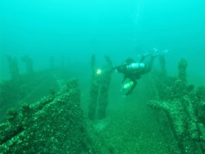 Scuba Diversions - Diving into Lake Erie's PASST @ Zoom Meeting